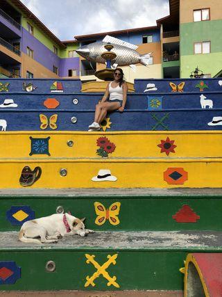 De hoogtepunten van Colombia