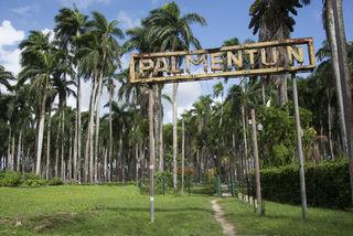 Leuke activiteiten in Suriname om te doen met kinderen