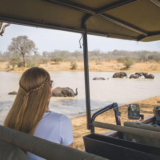 Familiereis Zuid-Afrika en Mozambique