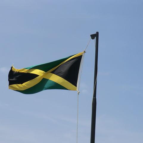 Jamaica met kinderen vlag