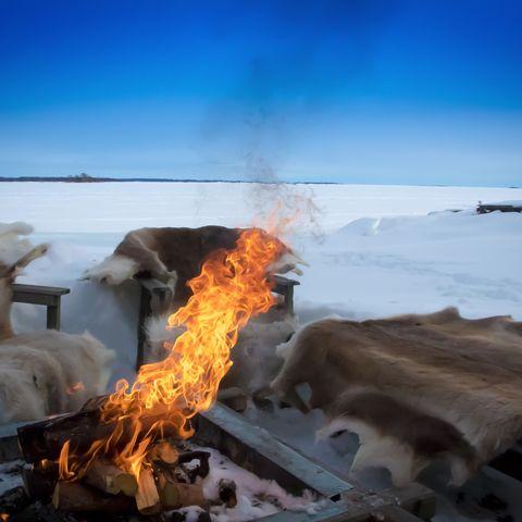 Familiereis Lapland