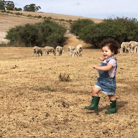 Camperreis Zuid-Afrika met kinderen