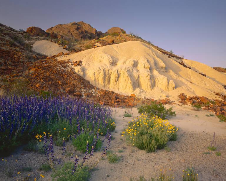 Big Bend Nationaal Park