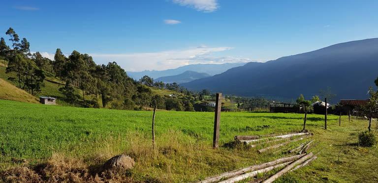 Uitzicht op de Andes