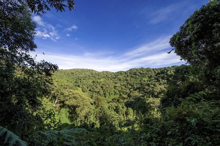 Landschap in Oeganda