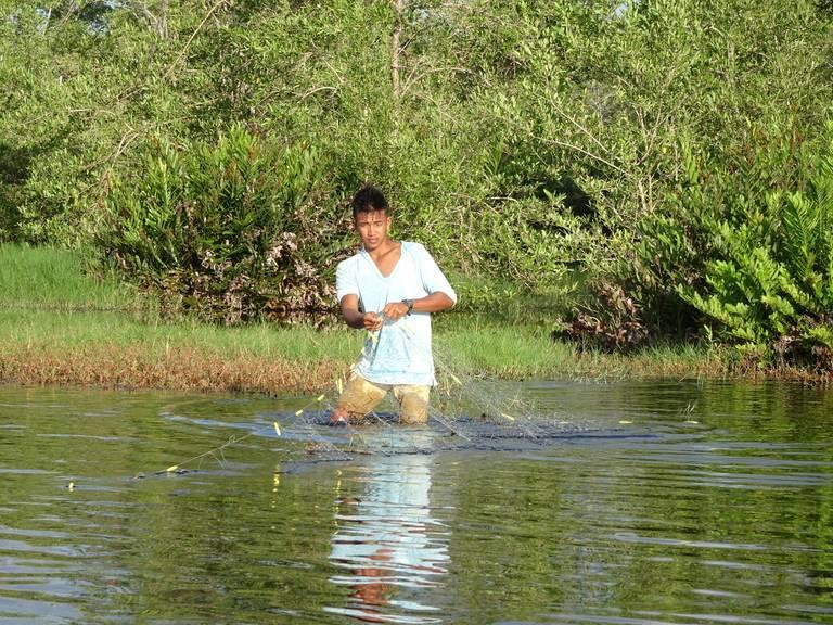 Lokale visser, Bigi Pan